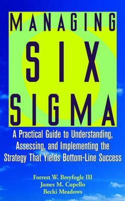Managing Six Sigma by Forrest W. Breyfogle image