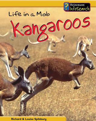 Animal Groups: Life in a Mob of Kangaroos Hardback by Louise Spilsbury image
