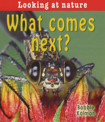 What Comes Next? by Bobbie Kalman image
