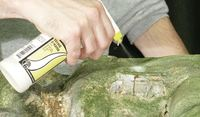 Woodland Scenics Scenic Sprayer image
