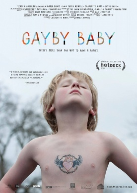 Gayby Baby on DVD