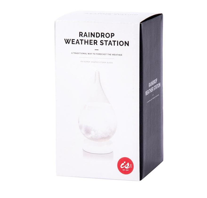Raindrop Weather Station image