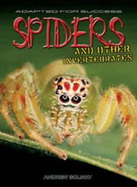 Spiders and other invertebrates by Andrew Solway image