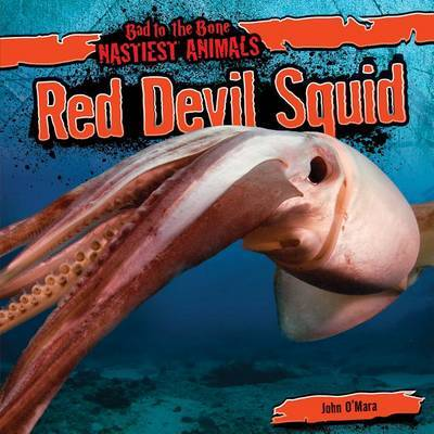 Red Devil Squid by John O'Mara image