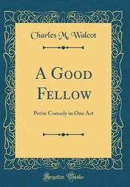 A Good Fellow by Charles M Walcot image