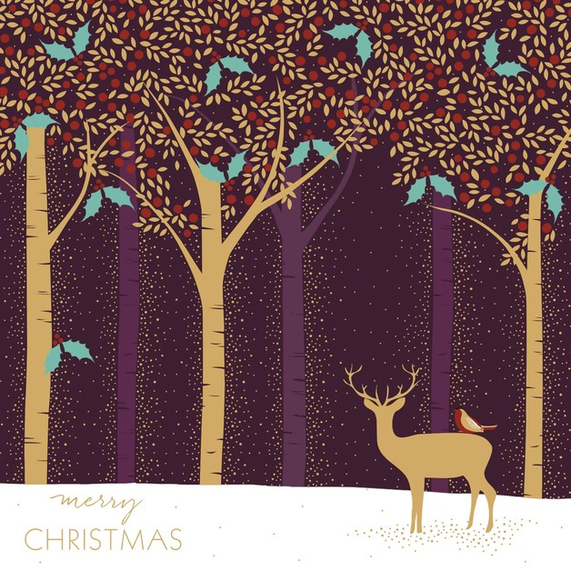 Unique Boxed Christmas Cards.Buy The Art File Luxury Boxed Christmas Cards Deer In A