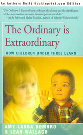 The Ordinary is Extraordinary by Amy Laura Dombro image
