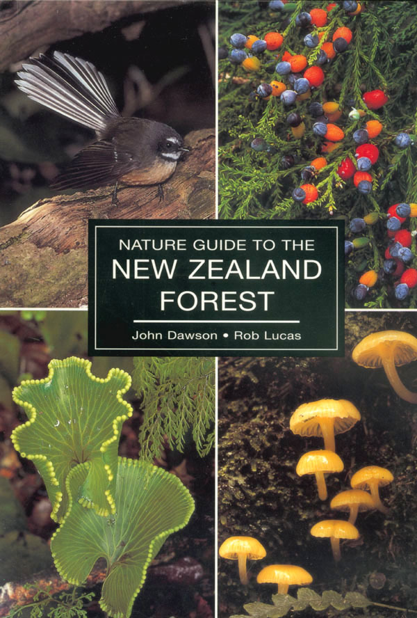 The Nature Guide to the New Zealand Forest by Rob Lucas image