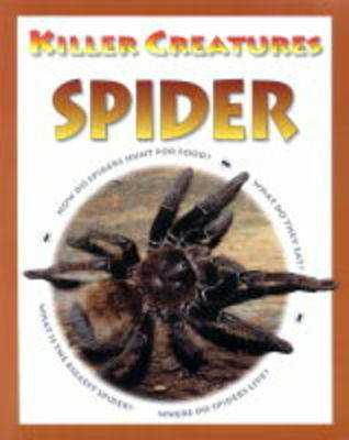 Spider by David Jefferis