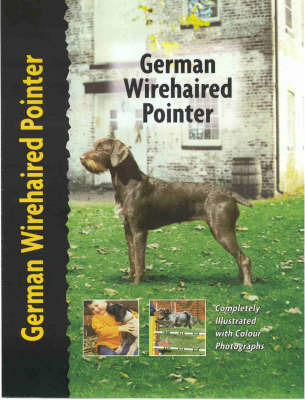 German Wirehaired Pointer by Ute Wand