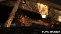 Tomb Raider (PS3 Essentials) for PS3 image