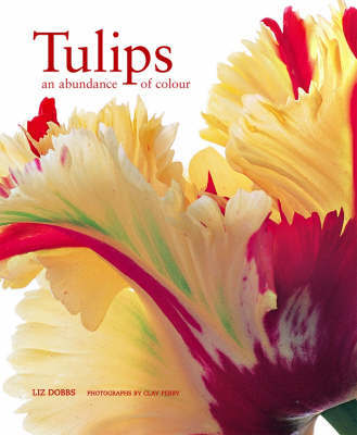 Tulips by Liz Dobbs image