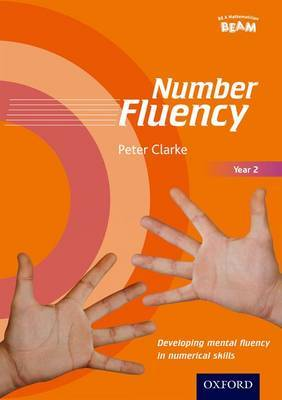 Number Fluency Year 2 Developing mental fluency in numerical skills image