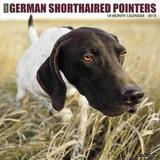 Just German Shorthaired Pointers 2018 Wall Calendar (Dog Breed Calendar) by Willow Creek Press