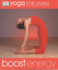 Boost Energy by Peter Falloon-Goodhew