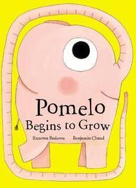 Pomelo Begins to Grow by Ramona Badescu
