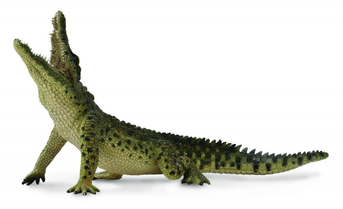 CollectA - Nile Crocodile Leaping (with Moveable Jaw) image
