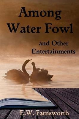 Among Water Fowl by E W Farnsworth image
