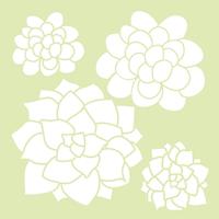 Kaisercraft: 6x6 Designer Template - Succulents