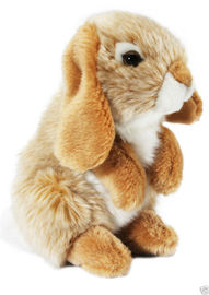 Nibbles Rabbit - Gold 18cm
