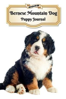 2020 Bernese Mountain Dog Puppy Journal by Notebooks Journals Xlpress