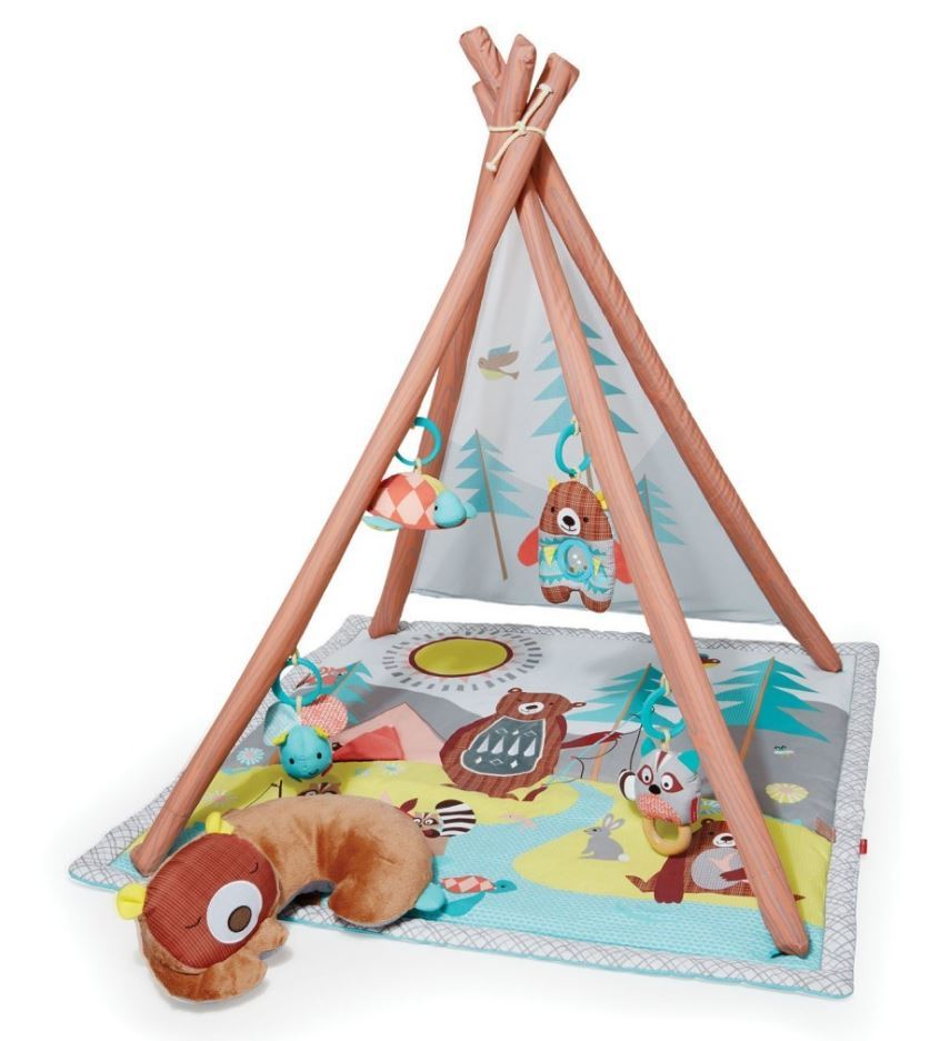 Skip Hop Camping Cubs Activity Gym image
