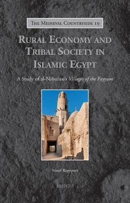 Rural Economy and Tribal Society in Islamic Egypt by Yossef Rapoport image