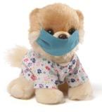 Itty Bitty Boo: Scrubs Boo Plush (12.5cm)