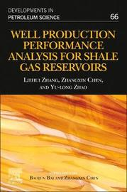 Well Production Performance Analysis for Shale Gas Reservoirs: Volume 66 by Chen