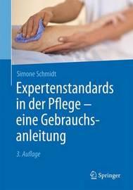 Expertenstandards in Der Pflege - Eine Gebrauchsanleitung by Simone Schmidt
