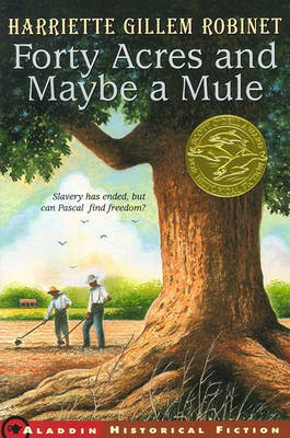 Forty Acres and Maybe a Mule by Harriette Gillem Robinet image