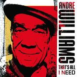 That's All I Need (LP) by Andre Williams