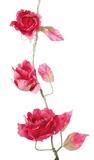 Vintage Rose Garland - Berry Pink