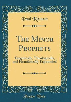 The Minor Prophets by Paul Kleinert image