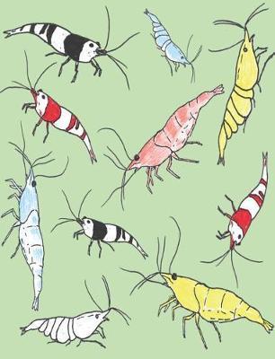 Aquarium Shrimp Pattern Composition Book by Shrimp Pattern by Dofthec