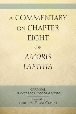 A Commentary on Chapter 8 of Amoris Laetitia by Francesco Coccopalmerio image