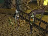 Dungeon Siege II Deluxe Edition for PC Games