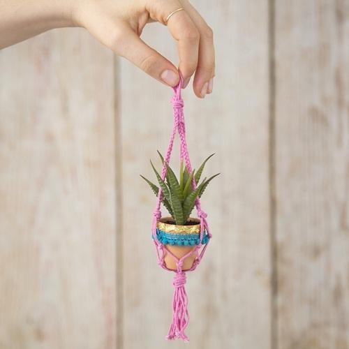 Natural Life: Macrame Succulent - Teal Pompom