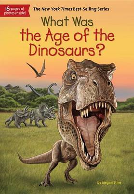 What Was The Age Of The Dinosaurs? by Megan Stine