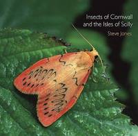 Insects of Cornwall and the Isles of Scilly by Steve Jones