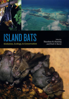 Island Bats image