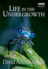 Life in the Undergrowth by David Attenborough Productions Ltd.