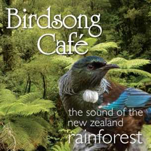 Birdsong Cafe: The Sound Of New Zealand Rainforest by Birdsong Cafe