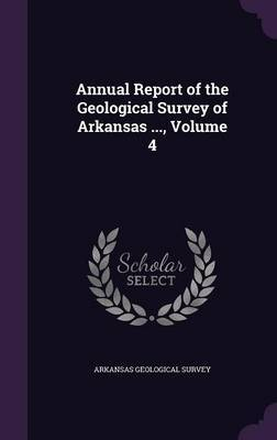 Annual Report of the Geological Survey of Arkansas ..., Volume 4