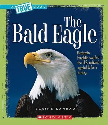 The Bald Eagle by Elaine Landau image