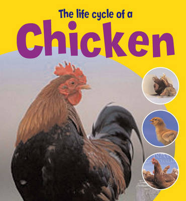 The Life Cycle of a Chicken by Ruth Thomson