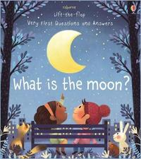 What is the Moon? by Katie Daynes
