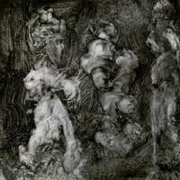 With Animals by Mark Lanegan & Duke Garwood
