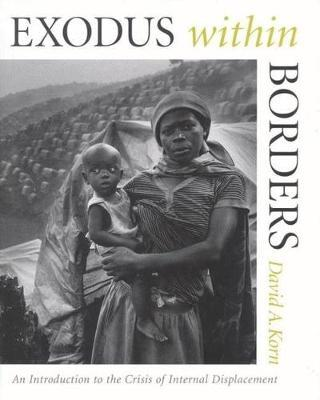 Exodus within Borders by David A Korn image