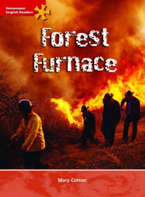 HER Intermediate Level Non-Fiction: Forest Furnace image